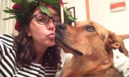 """Cane in overdose per un panetto di hashish: """"I pusher hanno ucciso Margot"""""""