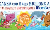 In vacanza coi nostri amici a 4 zampe: le migliori strutture pet-friendly
