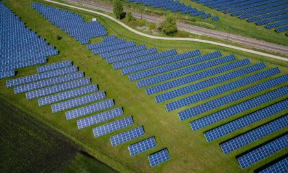 Fotovoltaico, petizione di Coldiretti: niente pannelli sui terreni agricoli