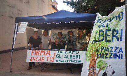 Piazza Mazzini, venerdì il Comitato consegnerà le firme all'Amministrazione