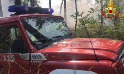 Fiamme nel Parco Pineta,  squadre antincendio al lavoro