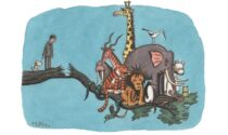 Animali fantastici e dove trovarli: a Mantova le illustrazioni del varesino Franco Matticchio
