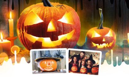 Per Halloween realizziamo una zucca... bella da paura!