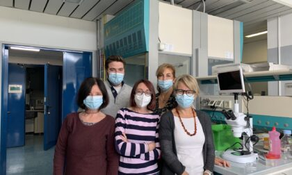 Nobel per la Medicina, nei laboratori dell'Insubria si studiano i sensori valsi il premio a Julius e Patapoutian